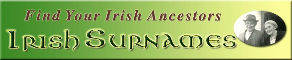 Irish Surname - Martin